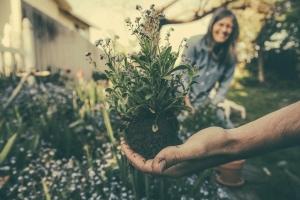 Gärtnern zur Entspannung